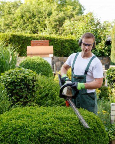 Peyzaj ve Bahçe Hizmetleri